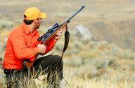 hunting_utah3.jpg